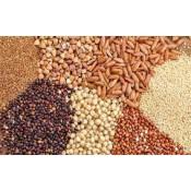 Προϊόντα Δημητριακών